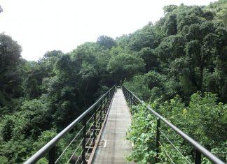 Tecer puente antiguo del funicular